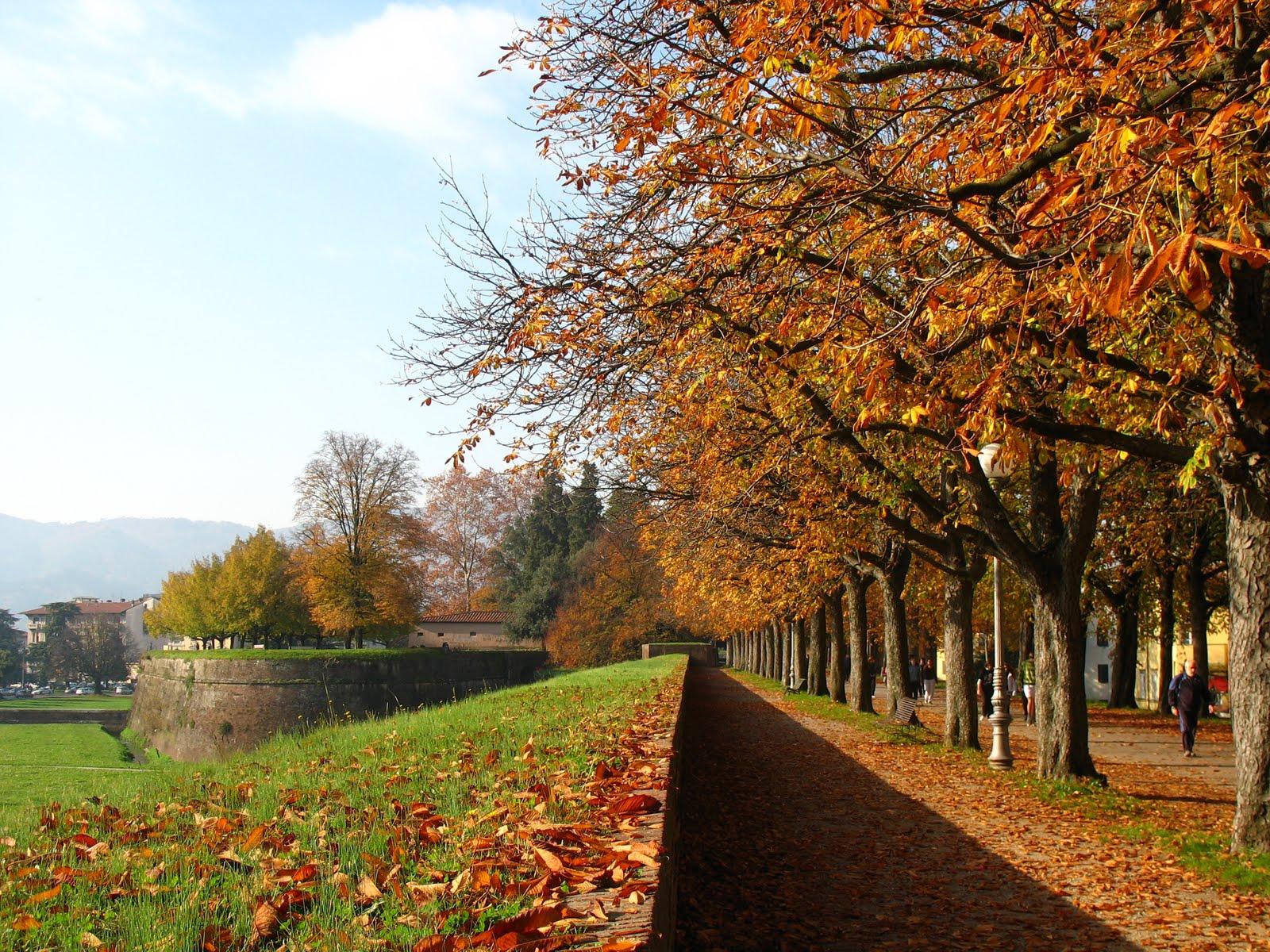 Lucca e le sue mura