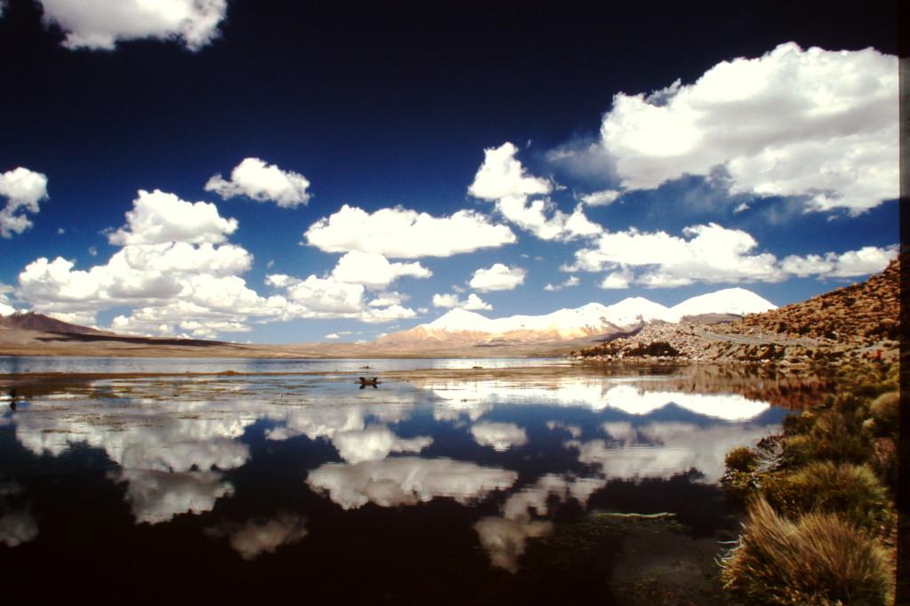 Lago Chungarà Chile - foto di Milena