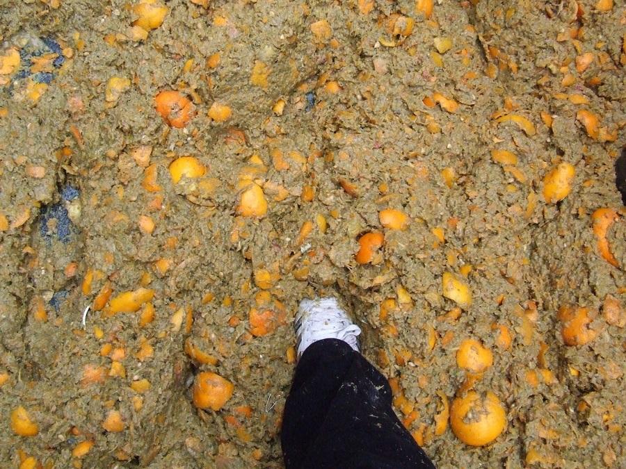 Il mio piede fra le arance...tanto per farvi capire!