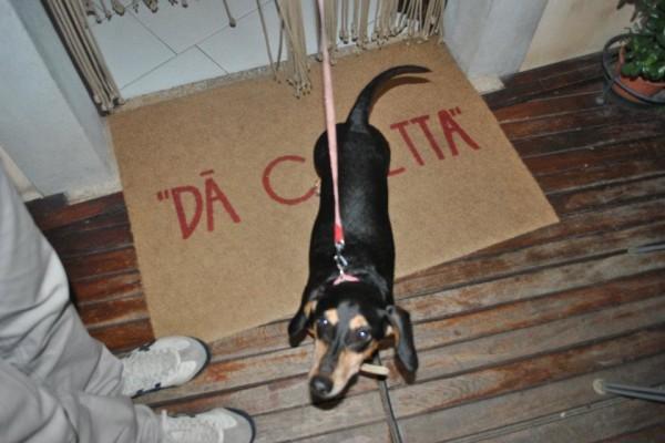 Maya, la protagonista di Dog Trip