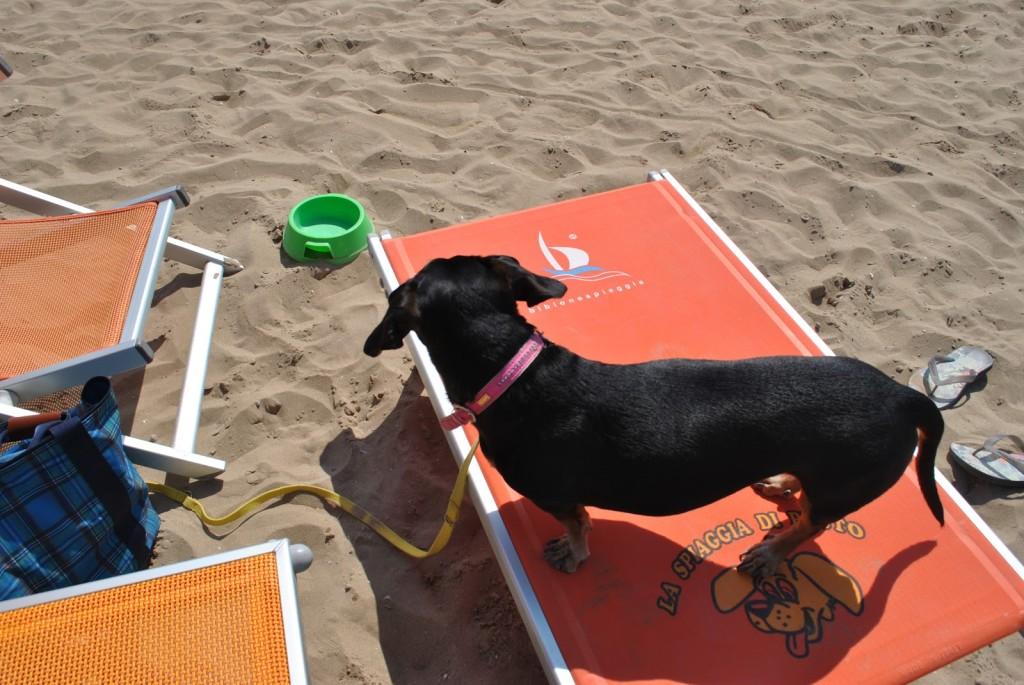 Maya sul suo lettino da spiaggia