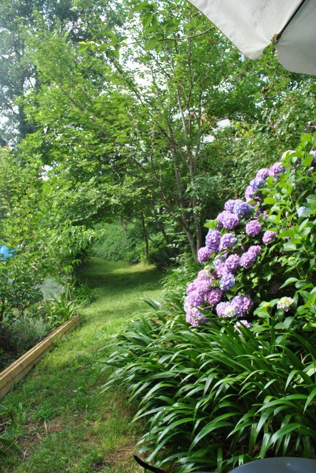 Il giardino di Wood