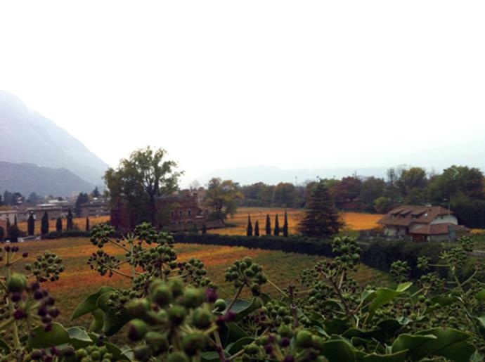 I colori dell'autunno in Alto Adige