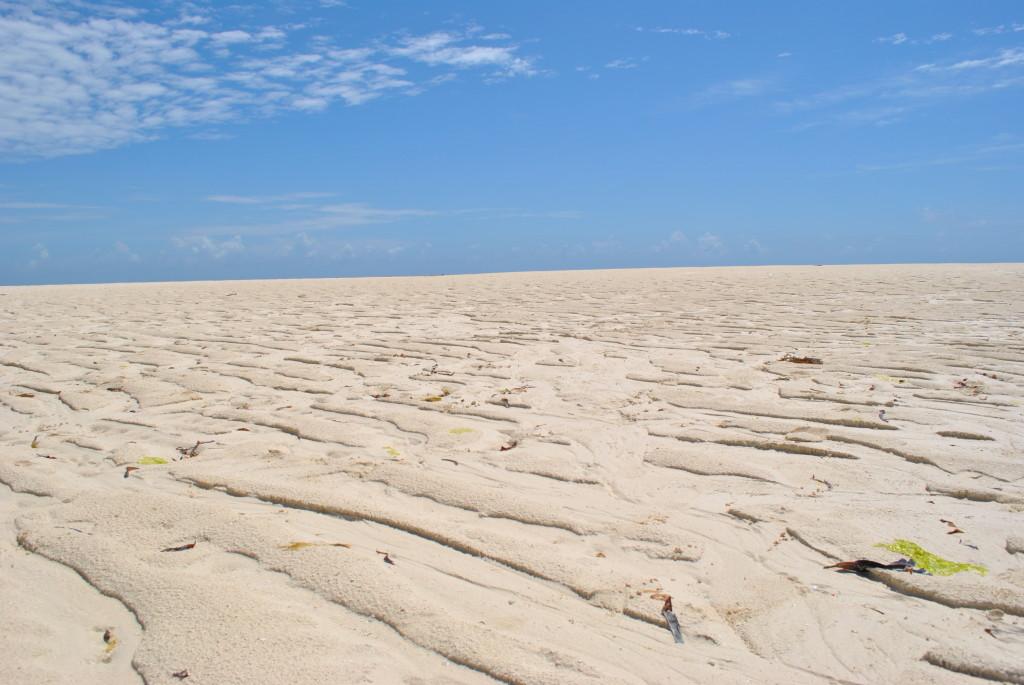 Sardegna 2 con la bassa marea