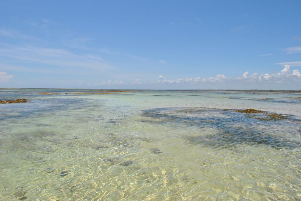 Sardegna due con alta marea