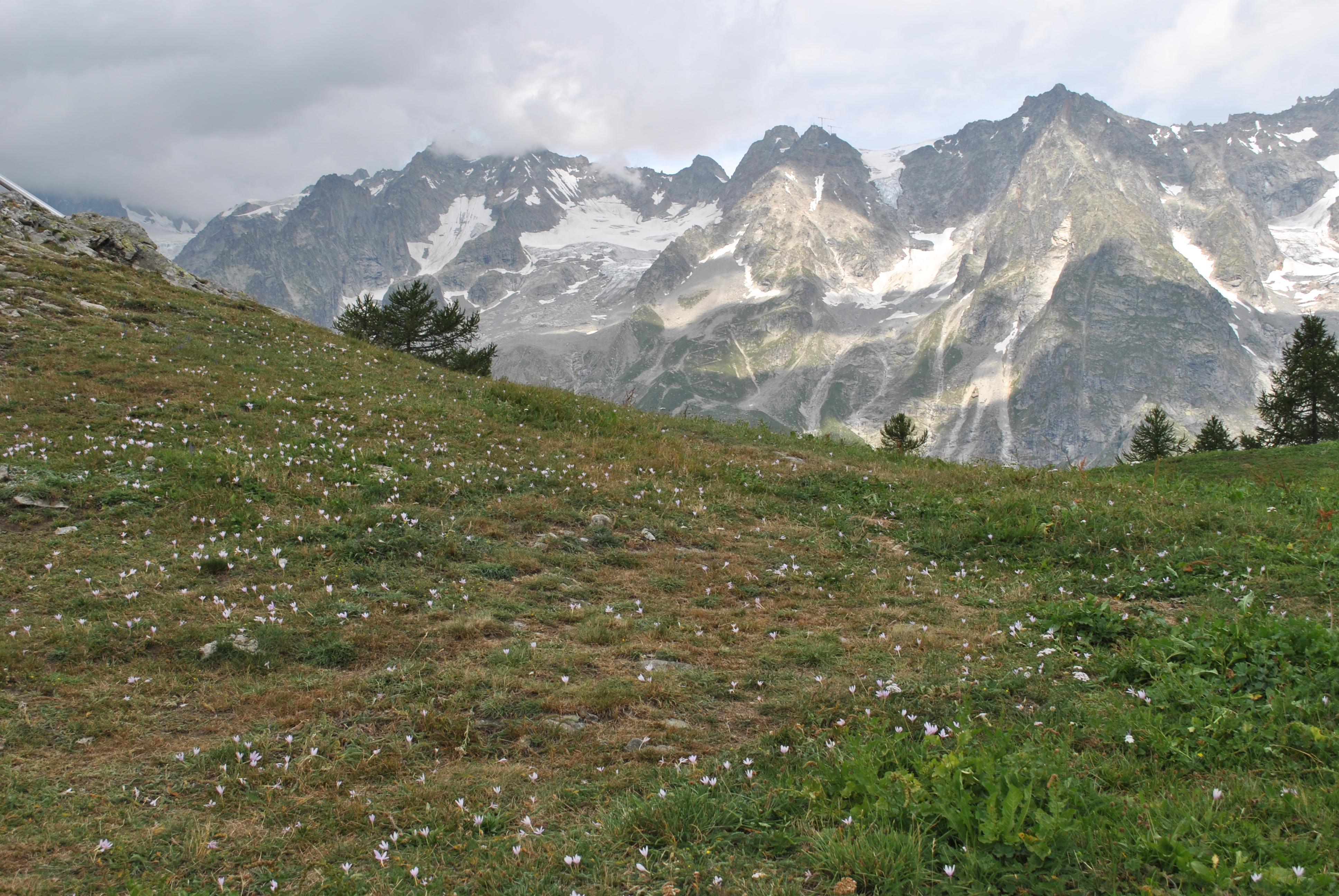 Trekking sul Monte Bianco