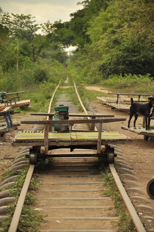 Mai saliti su di un trenino di bambù?