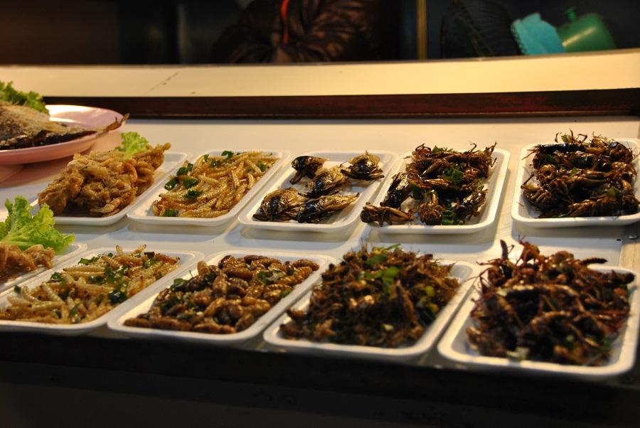 Gli insetti vengono serviti fritti: li ho trovati e provati al mercato dello street food di Chiang Rai