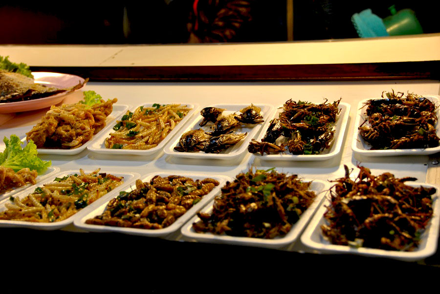 Mangiare insetti in Thailandia