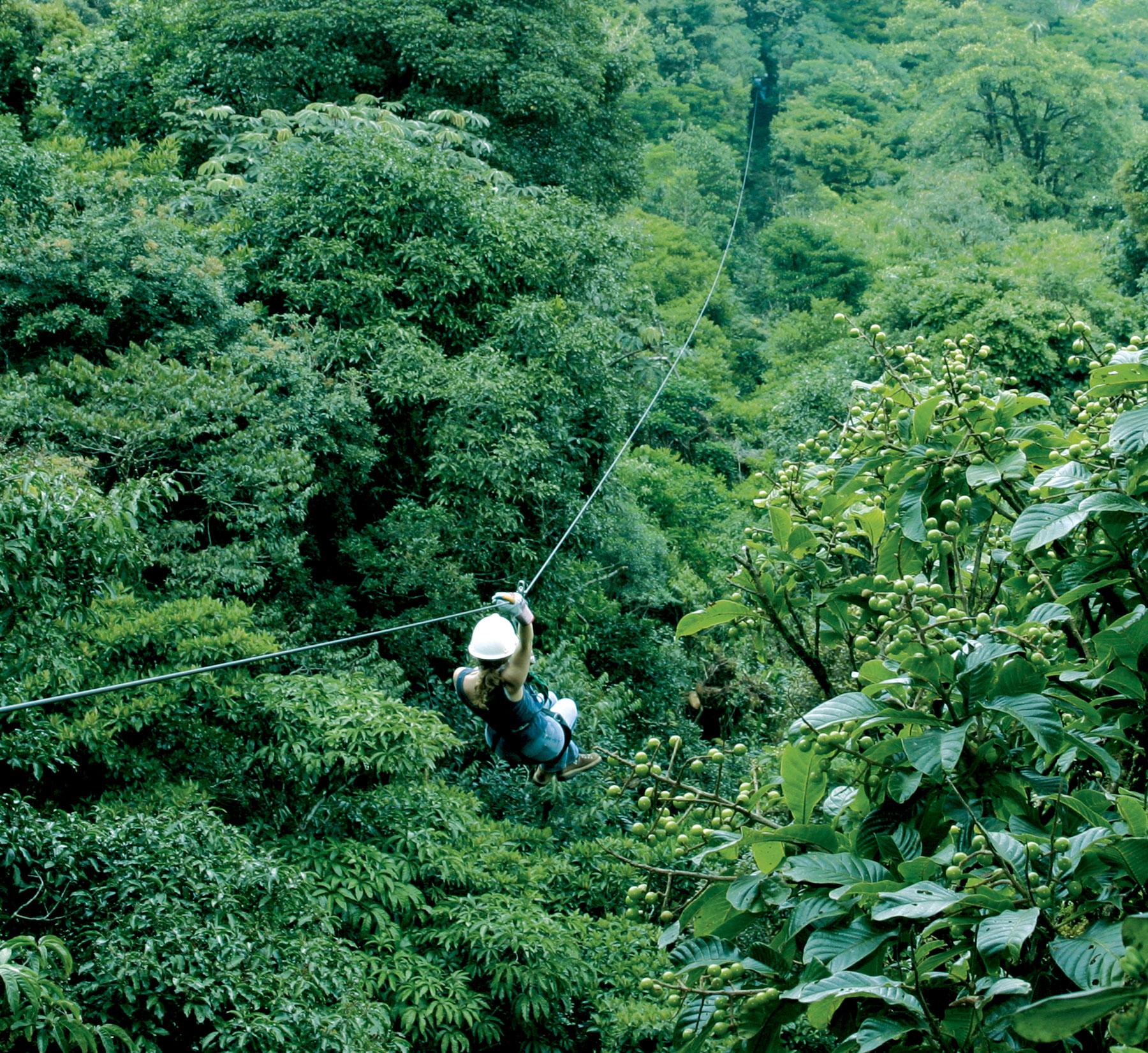 L'arte del Canopy in Costarica