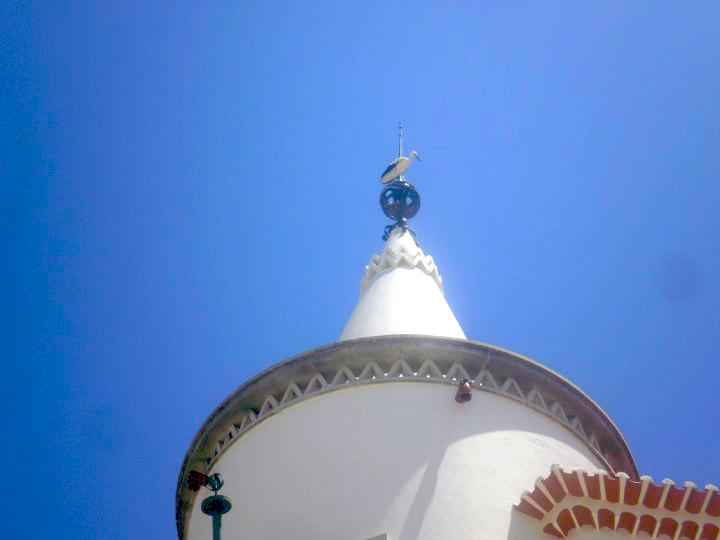 Faro, il paese delle cicogne