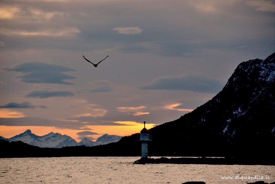 Il tramonto di Andenes, rientrando al porto
