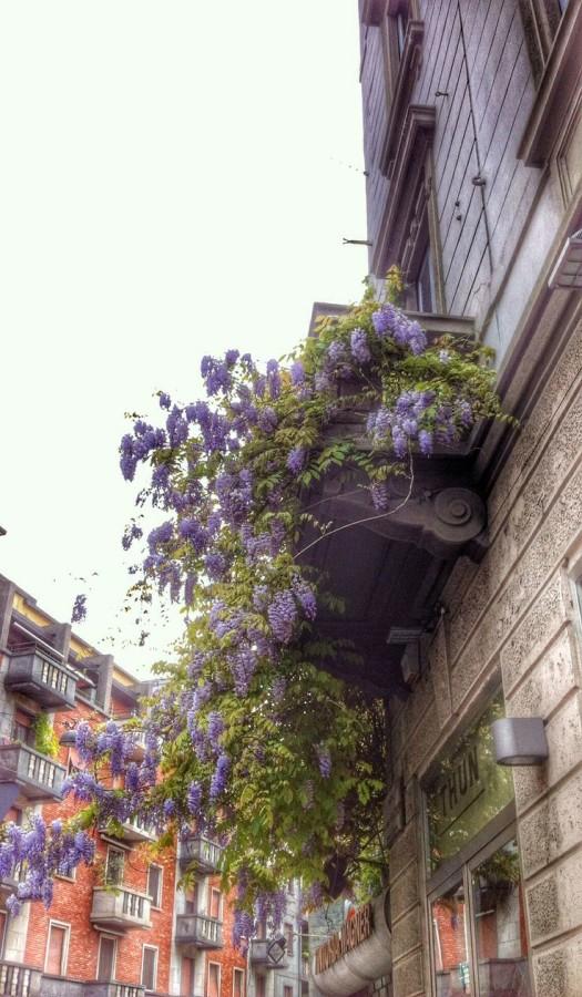 Finestre a Milano: e chi lo dice che è tutto grigio?!