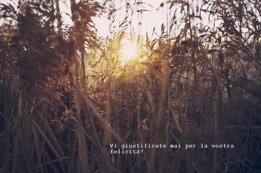 Vi giustificate mai per la vostra felicità?