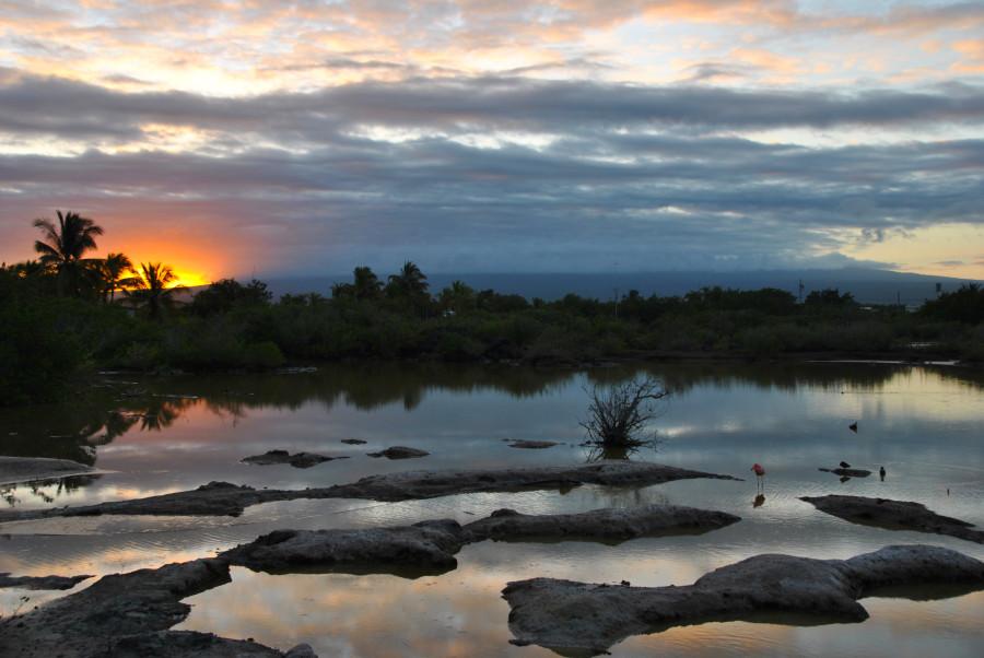 La bellezza di un tramonto sulla laguna di Isla Isabela, Galapagos
