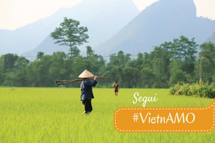 Viaggio in Vietnam con #VietnAMO