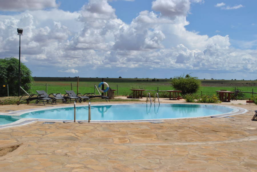 Una piscina nel cuore della savana africana