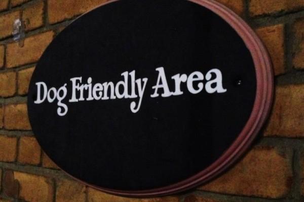 Cos'è una struttura dog friendly