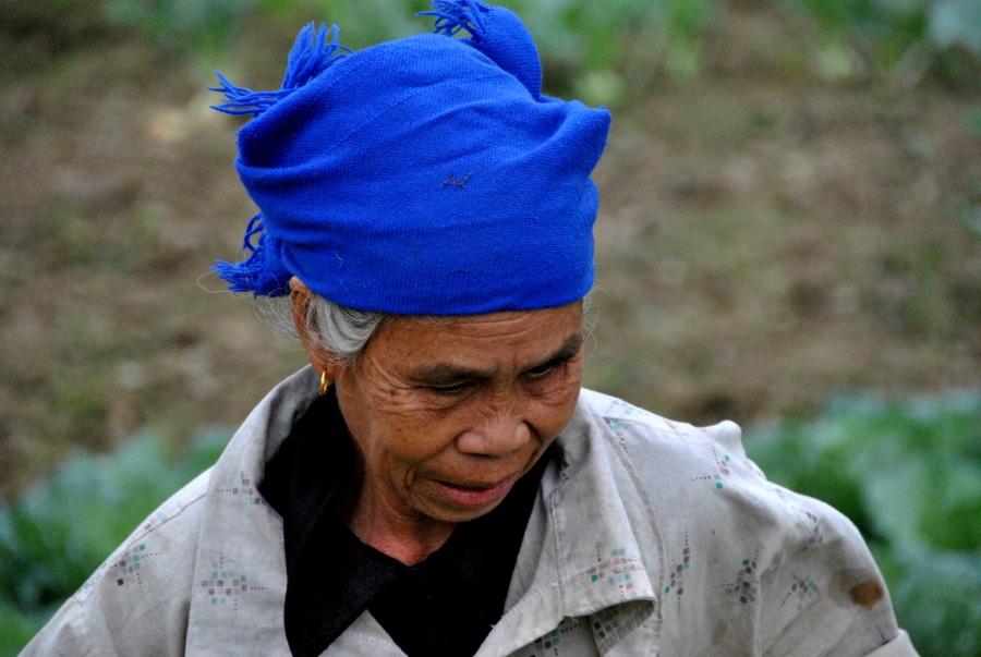 Donna vietnamita nelle risaie