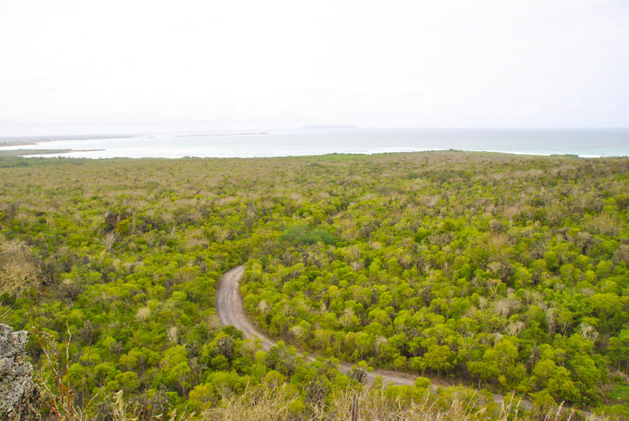 Natura alle Galapagos