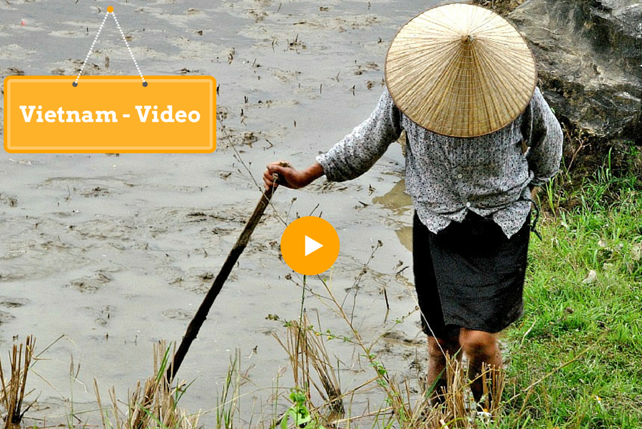Il video del Vietnam