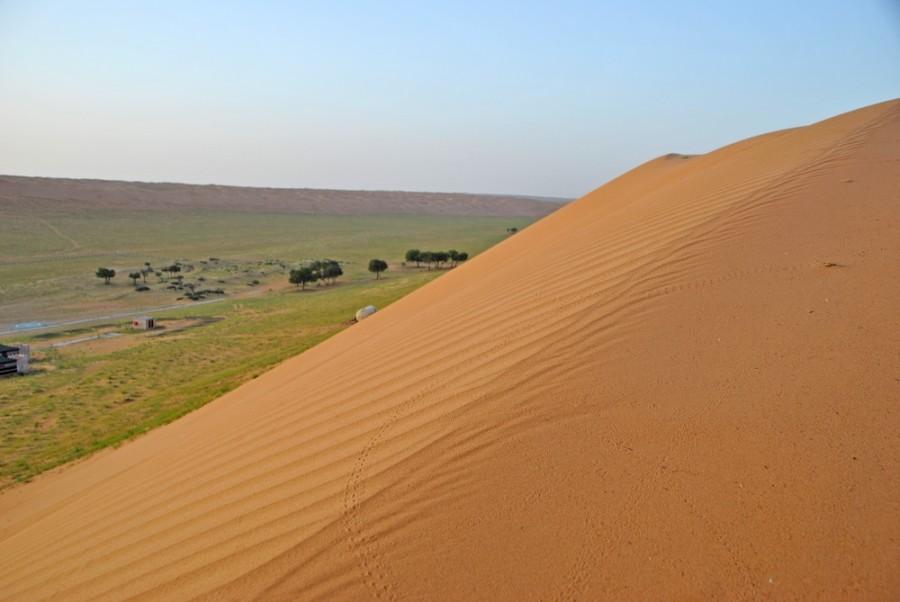 dune deserto oman