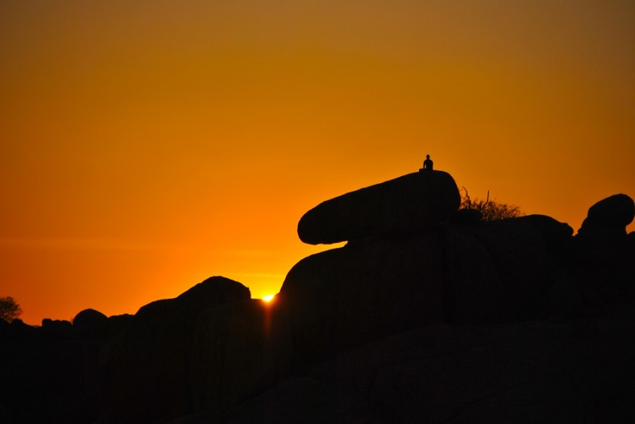 tramonti nella savana12000