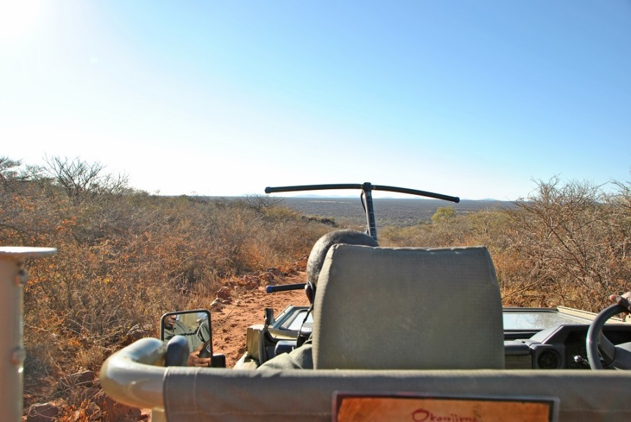 africat foundation trekking1000