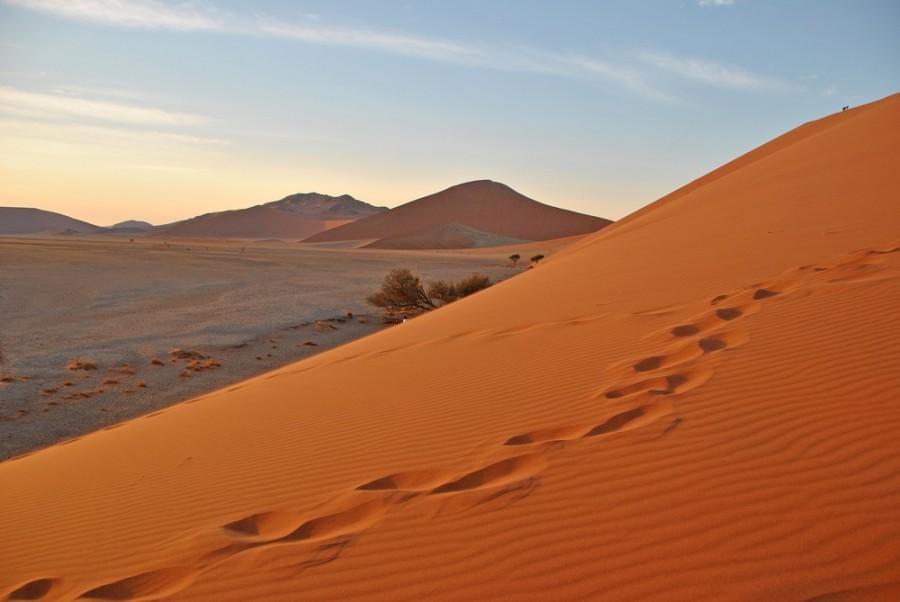desert of namib1000