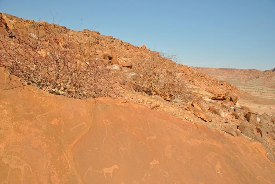 incisioni rupestri namibia1000