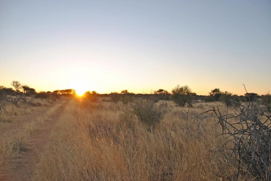 tramonto trekking africat foundation1000
