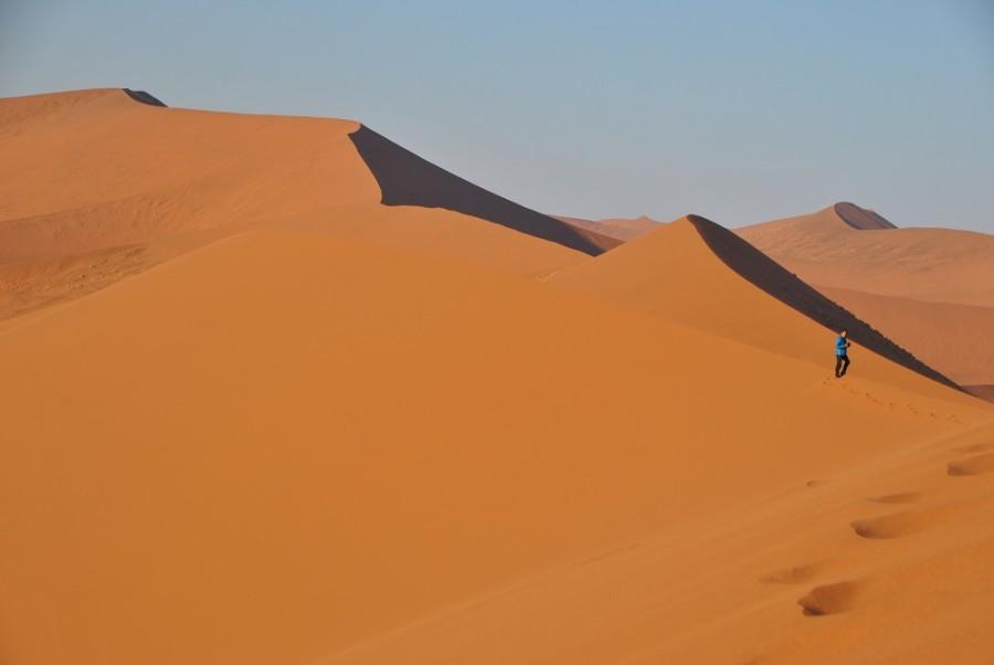dune-451000