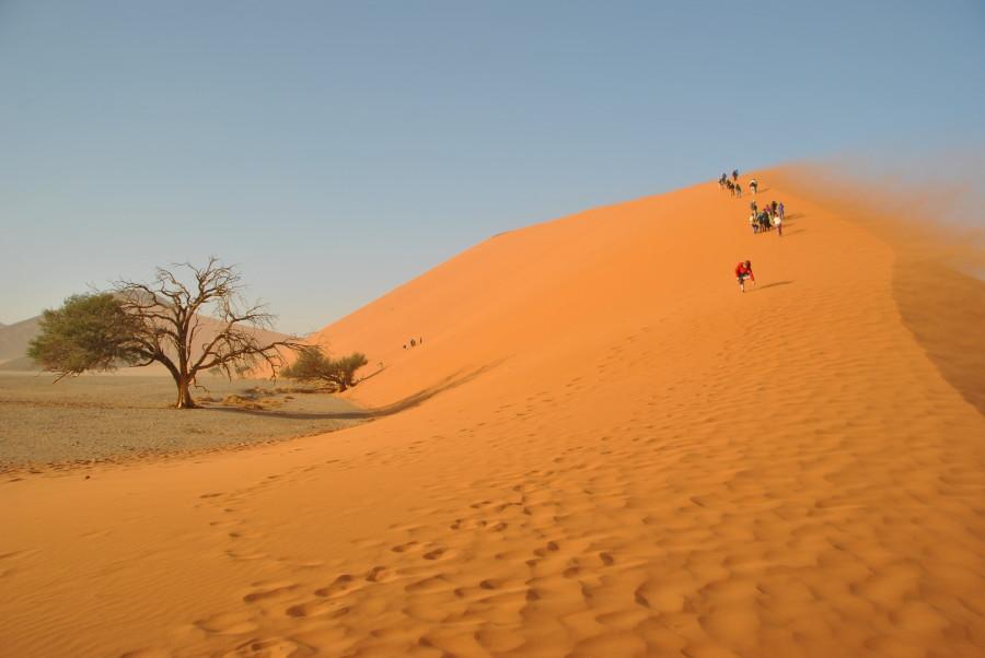 vento-sulla-duna1