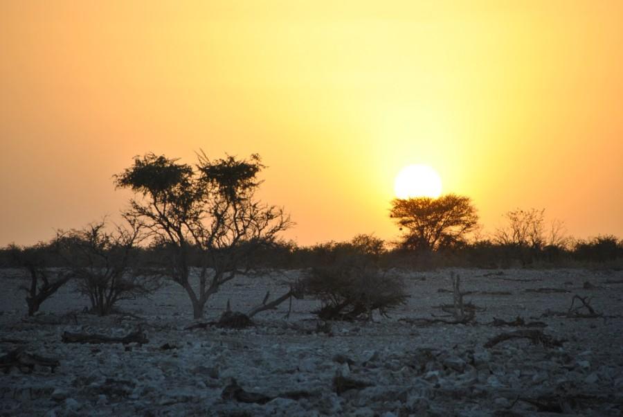 tramonto etosha 1000