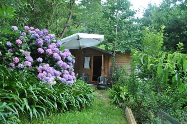 Cottage nel Bosco