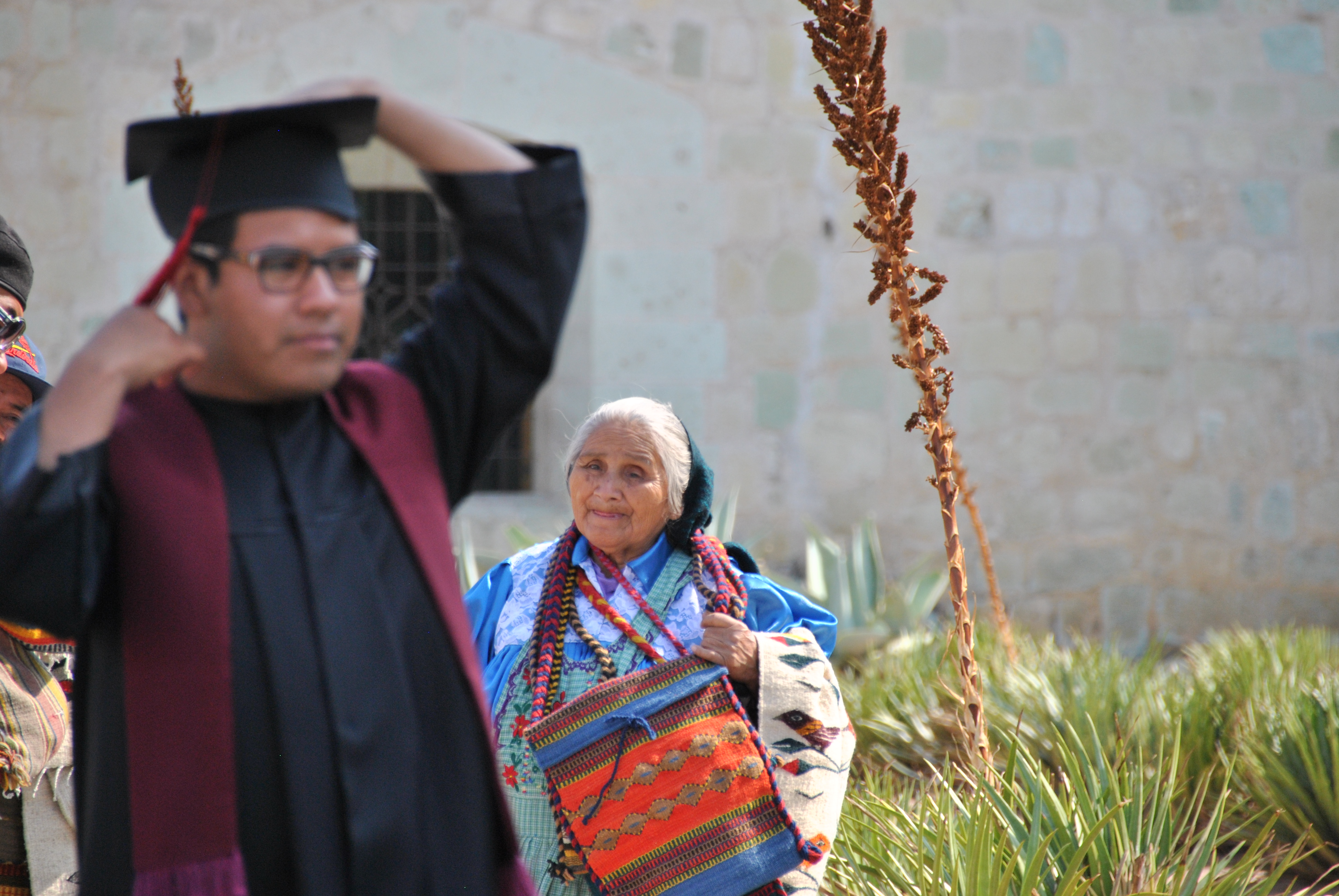 mexican degree